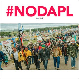 nodapl-vol-2-cover-360